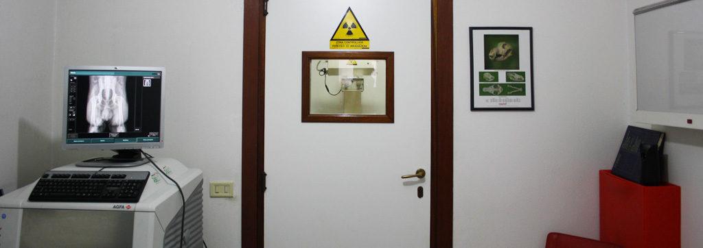 radiografia-villafelice