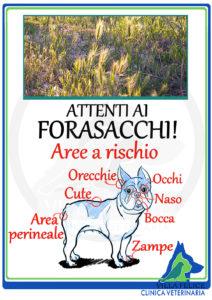 villafelice-Forasacchi